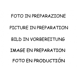Catalyseur sport 200 cpsi en inox Seat Ibiza MK5 (6F) 1.0TSI (85KW) FR 2019 - Aujourd'hui